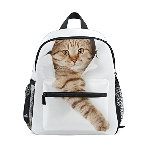 nbsp;Girls ZZKKO Funny nbsp;Backpack Cat Boys nbsp;School kitten nbsp;Bag Kids nbsp;for nbsp;Book nbsp;Toddler PBPg7SZqpA