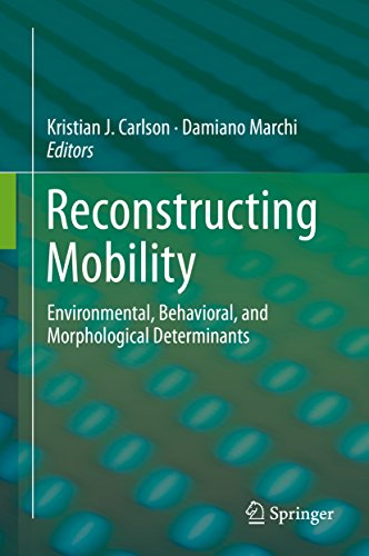 Download Reconstructing Mobility: Environmental, Behavioral, and Morphological Determinants Pdf