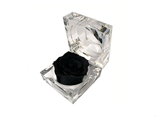 Acrylic Flowers Ring (Mini Acrylic Preserved Flower Dried Rose Ring Earrings Box (Black))
