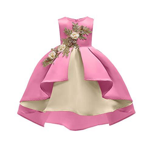 COMISARA Easter Dresses for Little Girls Kids Flower Girl Dress Size 4t 5t Teen Christmas Elegant Paegant Party Wedding Fancy Prom Formal Ball Gown Dresses for Toddler Girls (Pink 120) ()