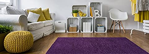 Soft Shag Area Rug 5x7 Plain Solid Color PURPLE - Contemporary Area Rugs for Living Room Bedroom Kitchen Decorative Modern Shaggy (Shaggy Purple Rug)