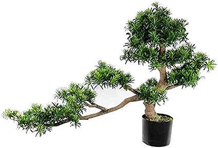Amazon Com Xpkzyslj Artificial Tree Podocarpus Bonsai Home Decor Bonsai Lover Tree Christmas Green 142 Cm 4 6ft 38 Cm 1 2ft 80 Cm 2 6ft Sports Outdoors