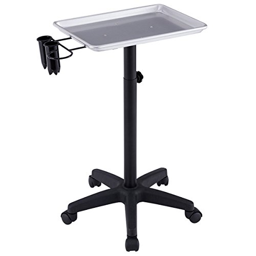 Price comparison product image Giantex Beauty Rolling Trolley Cart Salon Instrument Service Tray with Accessory Caddy (Silver)