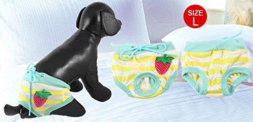 Amazon.com : eDealMax Los Pantalones perro de mascota fresa ornamento Sanitarias del gato Cortos bragas pañal, X-Large : Pet Supplies