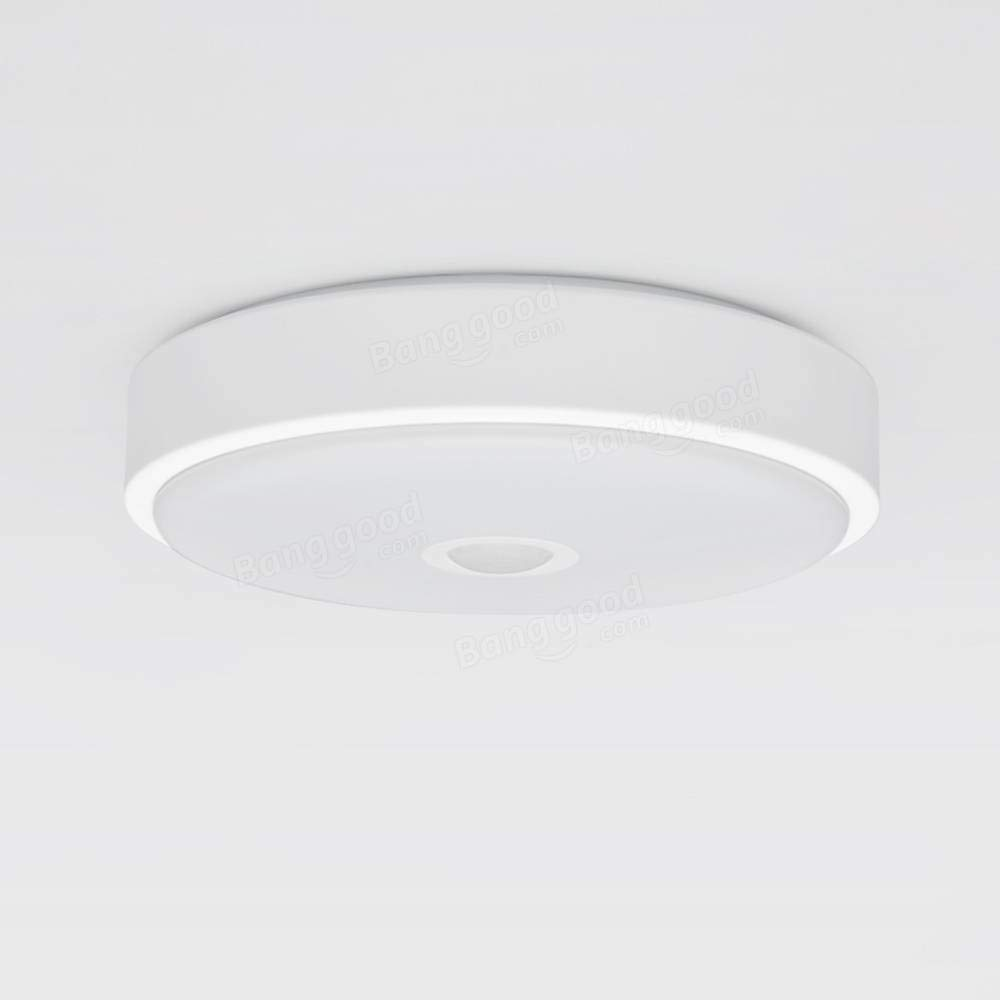 Ceiling Light - Sports & Outdoor - 1PCs