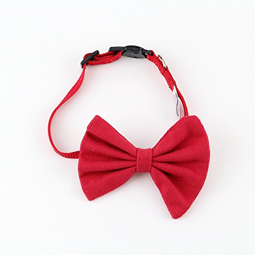 Red Bow Tie Cat Collar Canvas with Breakaway Buckle by Midlee (Red) (Bow Collar Tie Cat Bell Red With)