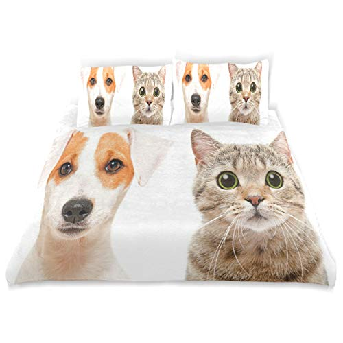 (SINOVAL Decor Duvet Cover Set, Close Up Portraits of Jack Russell Terrier Dog and Scottish Straight Cat Photo A Decorative 3 Pcs Bedding Set with Pillowcases, Twin/Twin XL)