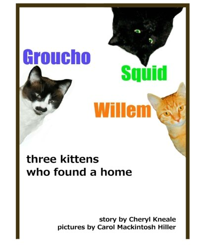 Groucho * Squid * Willem: three kittens who found a home ebook