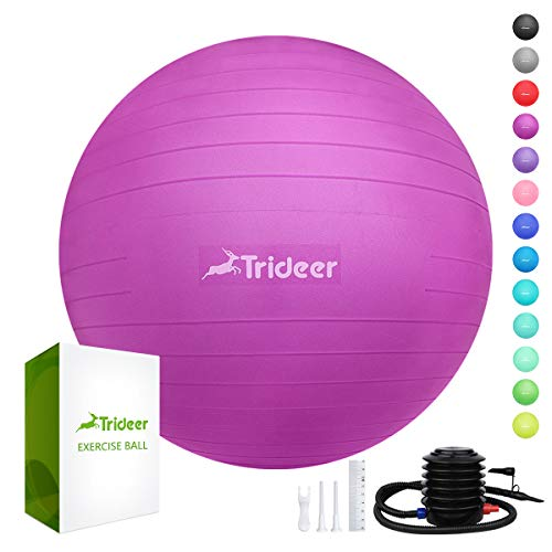 Price comparison product image Trideer Exercise Ball (45-85cm) Extra Thick Yoga Ball Chair,  Anti-Burst Heavy Duty Stability Ball Supports 2200lbs,  Birthing Ball with Quick Pump (Office & Home & Gym) (Fuchsia,  S (38-45cm))