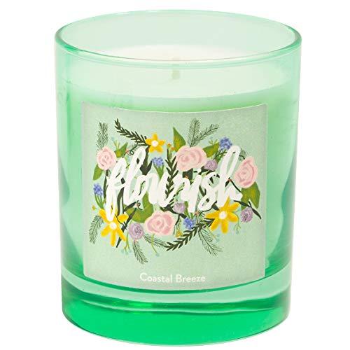 Eccolo World Traveler Thimblepress Bouquet Candle, Coastal Breeze Fragrance, Glass Jar, Bible Verse, 8oz, 40+ Hour Burn Time, Gift Boxed, 3.5x2.8