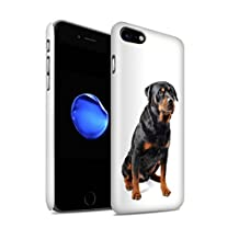 STUFF4 Gloss Hard Back Snap-On Phone Case for Apple iPhone 8 / Swiss Mountain Design / Dog Breeds Collection
