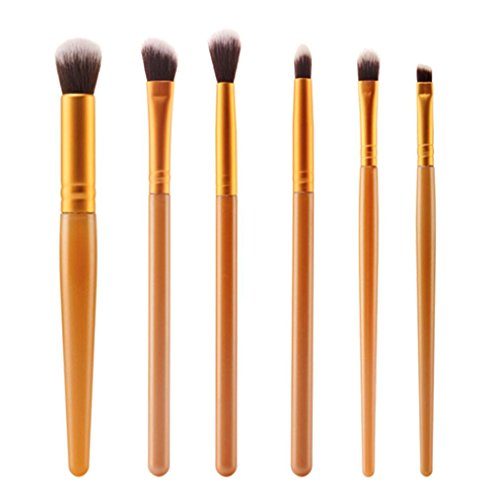6 Pcs Cosmetic Brush Makeup Brush Sets Kits Tools