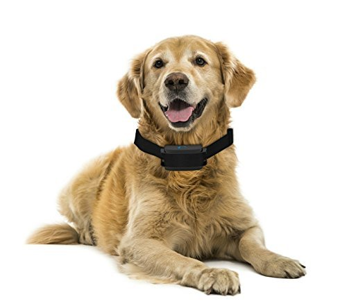 Bark Solution ® Dog Training E-collar