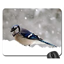 Blue Jay Mouse Pad, Mousepad (Birds Mouse Pad)