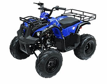 125 Atv (TaoTao 125 D-R Utility Kids / Youth size ATV with REVERSE  with BIG Tires)