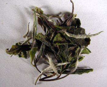 Organic Big Leaf Baimudan 1 lb