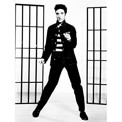 Wee Blue Coo Music Vintage Photography Elvis Presley Jailhouse Rock King USA Canvas Print