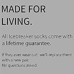 Icebreaker Merino Hike+ Medium Crew