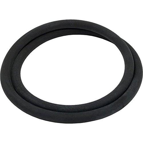 Pentair 313225 O-Ring for Stainless Steel Separation Filter Tanks