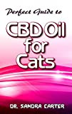 Perfect Guide to CBD Oil for Cats: Its contains all
