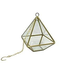 Noah Decoration Geometry Diamond Shape Succulent/ Air Plants Glass Terrarium Gold
