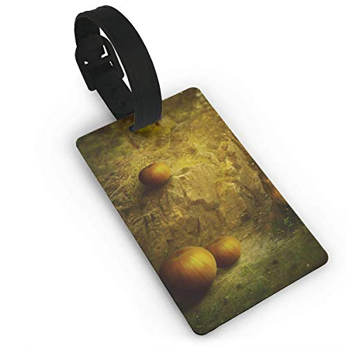 ASLGlicenseplateframeFG Luggage Tag Happy Halloween Business ID Card Holder with Adjustable Strap fo Baggage Bag/Suitcases Business Card Holder Name ID Labels 3.7X2.2in PVC Size 2.2'' X 3.7''