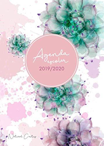 Agenda escolar 2019-2020 Natural Cactus: El Calendario Semestral y Planificador de Estudios | Agenda 2019 - 2020 para el Nuevo año Académico - español (Spanish Edition)