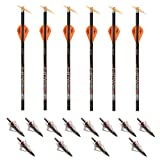 Ravin Crossbows R133 0.003 400 Grain Lighted Arrows (12 Pack, Black/Red) and NAP Redneck Hunting Broadheads Kit