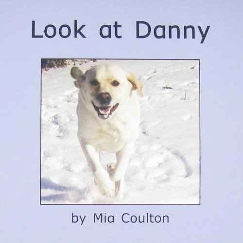 Look at danny (Get to Know Danny) ebook