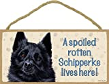 (SJT60715) A spoiled rotten Schipperke lives here wood sign plaque 5