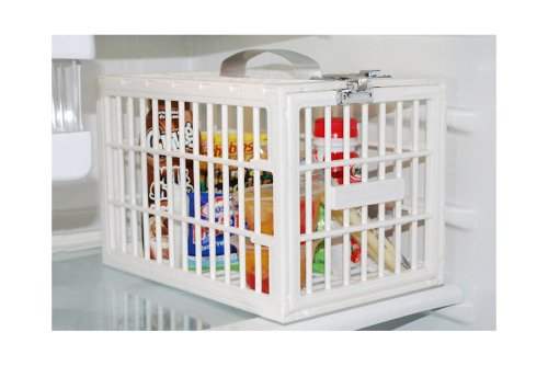Kühlschrank Tresor : Kühlschrankbox kühlschrankschloss fridge locker kühlschrank tresor