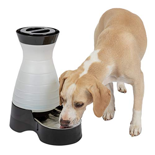 (PetSafe Healthy Pet Water Station, Dog and Cat Water System with Stainless Steel Bowl, Medium, 128 oz.)