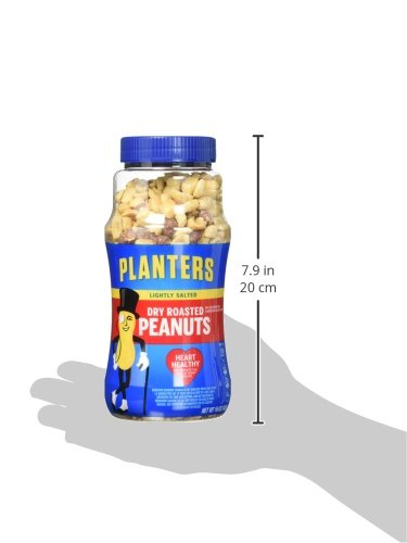 029000076501 - Planters Dry Roasted Peanuts Lightly Salted 16 oz (Pack of 12) carousel main 10