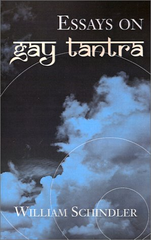 Essays on Gay Tantra ebook