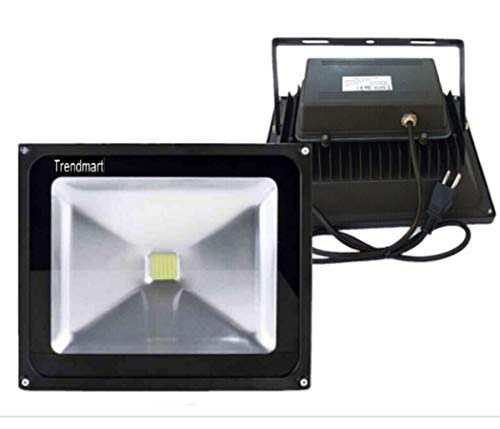 Trendmart Led Flood Light 10w Cool White Outdoor Lighting Garden Light Come with Us Standard 3 Pin Plug (Cool White, 10w with Us Plug)
