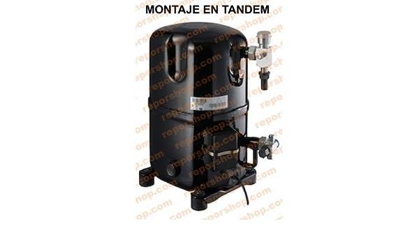 REPORSHOP - COMPRESOR EMBRACO TGP4543Y R134 Media Temperatura Motor 12,44CC: Amazon.es: Hogar