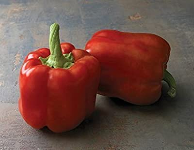David's Garden Seeds Pepper Bell Red Bull D49880BN (Red) 50 Hybrid Seeds