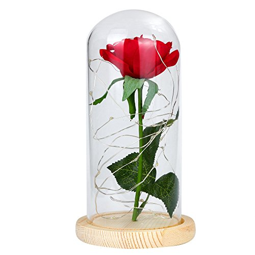 (Star_wuvi Beauty and The Beast Red Rose kit Enchanted and Led Light with Fallen Petals in Glass Dome on Wooden Base Gift for Valentine's Day Christmas Home Decor Party Wedding Anniversary (Beige))