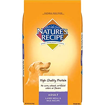 Nature's Recipe Adult Dry Dog Food