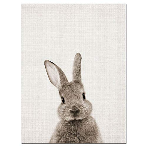Ches Rabbit Bunny Butt Tail Canvas Art Poster Woodland Baby Animal Nursery Print Painting Wall Picture for Living Room Decor,50X70Cm Unframed,Picture 1