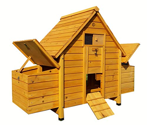 Cocoon CHICKEN COOP HEN HOUSE POULTRY ARK NEST BOX NEW - WITH 4 NEST BOXES...