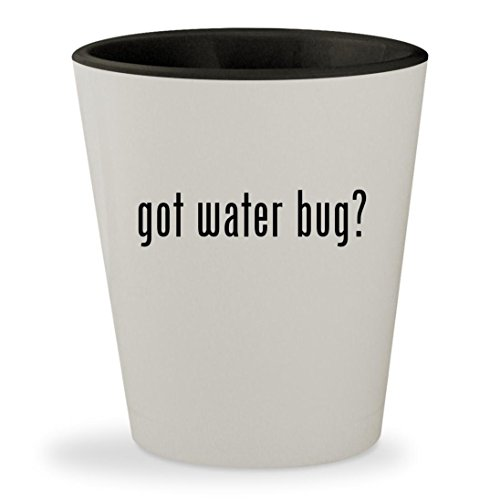 got water bug? - White Outer & Black Inner Ceramic 1.5oz Shot - Waterbugs Sunglasses