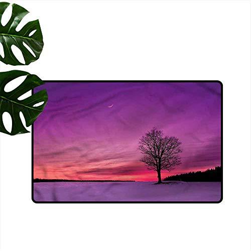(Thin Door mat Night Sky Idyllic Sunset in Field Super Absorbent mud W31 xL47)