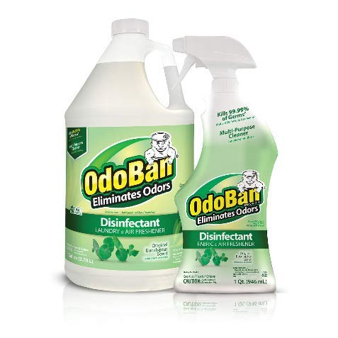OdoBan Ready-to-Use 32 oz Spray Bottle & 1 Gal Concentrate, Eucalyptus Scent - Odor Eliminator, Disinfectant, Flood Fire Water Damage Restoration by OdoBan