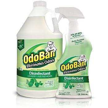Amazon Com Clorox Commercial Solutions Clorox Odor