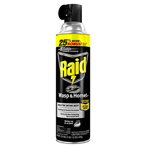 Raid Wasp and Hornet Spray
