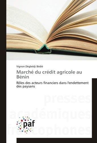 marche-du-credit-agricole-au-benin-roles-des-acteurs-financiers-dans-lendettement-des-paysans-french
