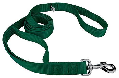 Country Brook Design | 6ft By 1 Inch Heavyduty Doublehandle Nylon Leash - Green