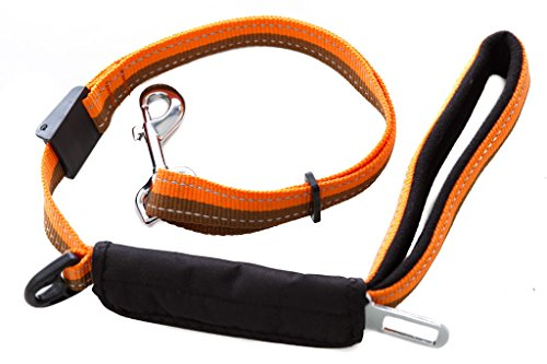 Leash (3Ft Dog Leash with Car Seat Belt, Nylon Strap with Padded Silk Handle,Really Great For Dog & Cat Training, Adjustable Multi Use Hand Leash - Free Waste Bag Dispenser - by WPS pet supplies)