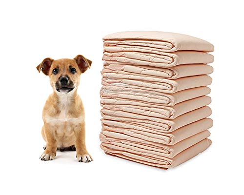 WMP Pet Training Puppy Pads 30 x 36 Inch Large 100g Quilted Superabsorbent Odor Eliminated Low Profile Training Pads - 100 Count